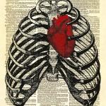 Mercury's Heart: Horoscopes for the Week of October 13th.