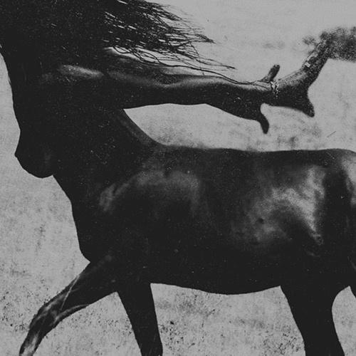 Image from Pinterest, Centaurs