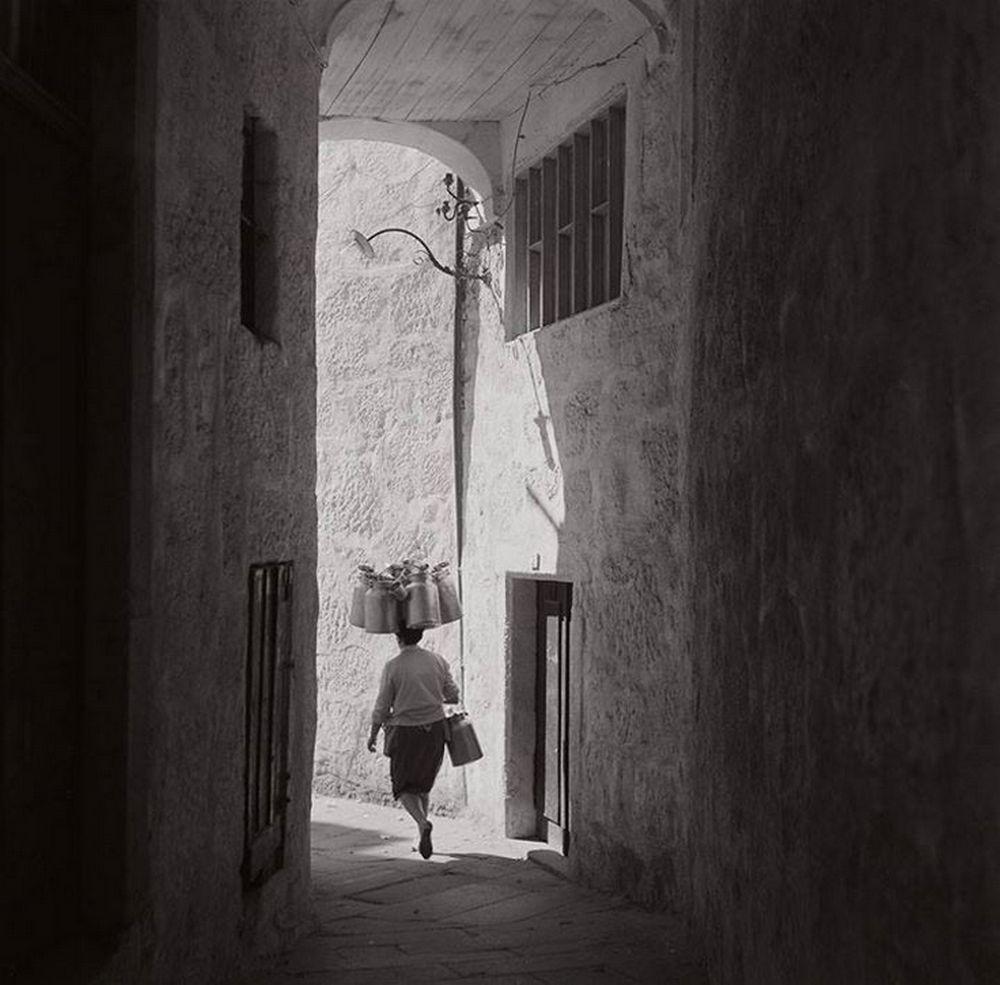 image by Jorge Henriques