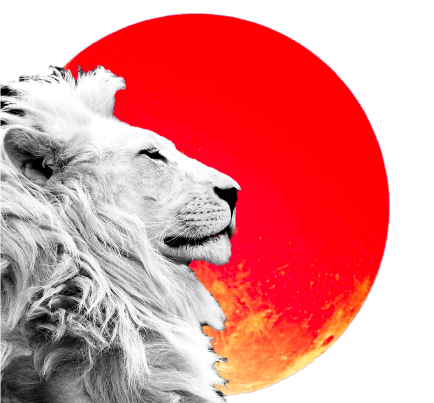 28f16018a Lunar Eclipse in Leo: Horoscopes for the Week of February 6th ...
