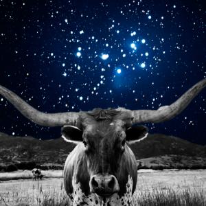 Horoscopes for May 1st – May 14th