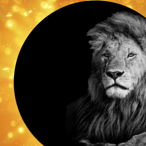 Affirmation Horoscopes for the Solar Eclipse in Leo – August 2018