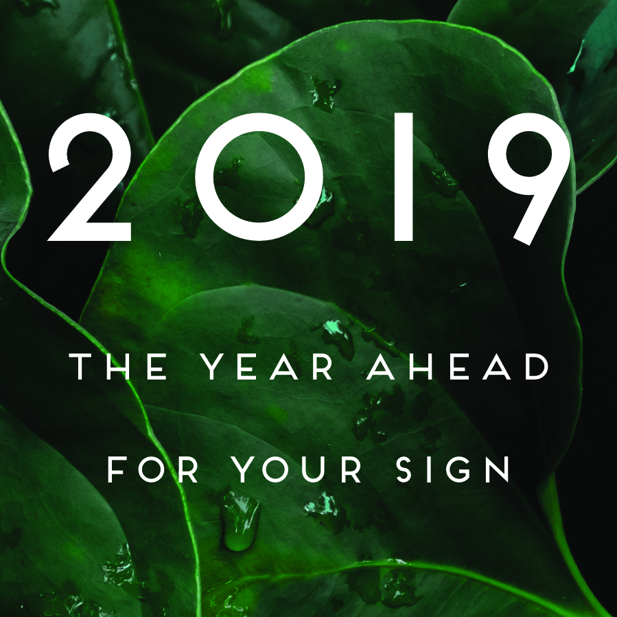 Your 2019 Horoscope ~ Chani Nicholas