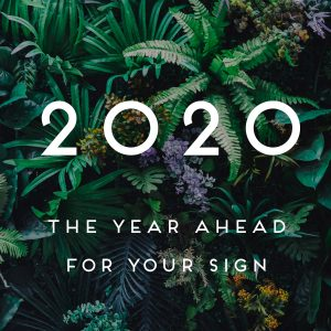 2020 YA
