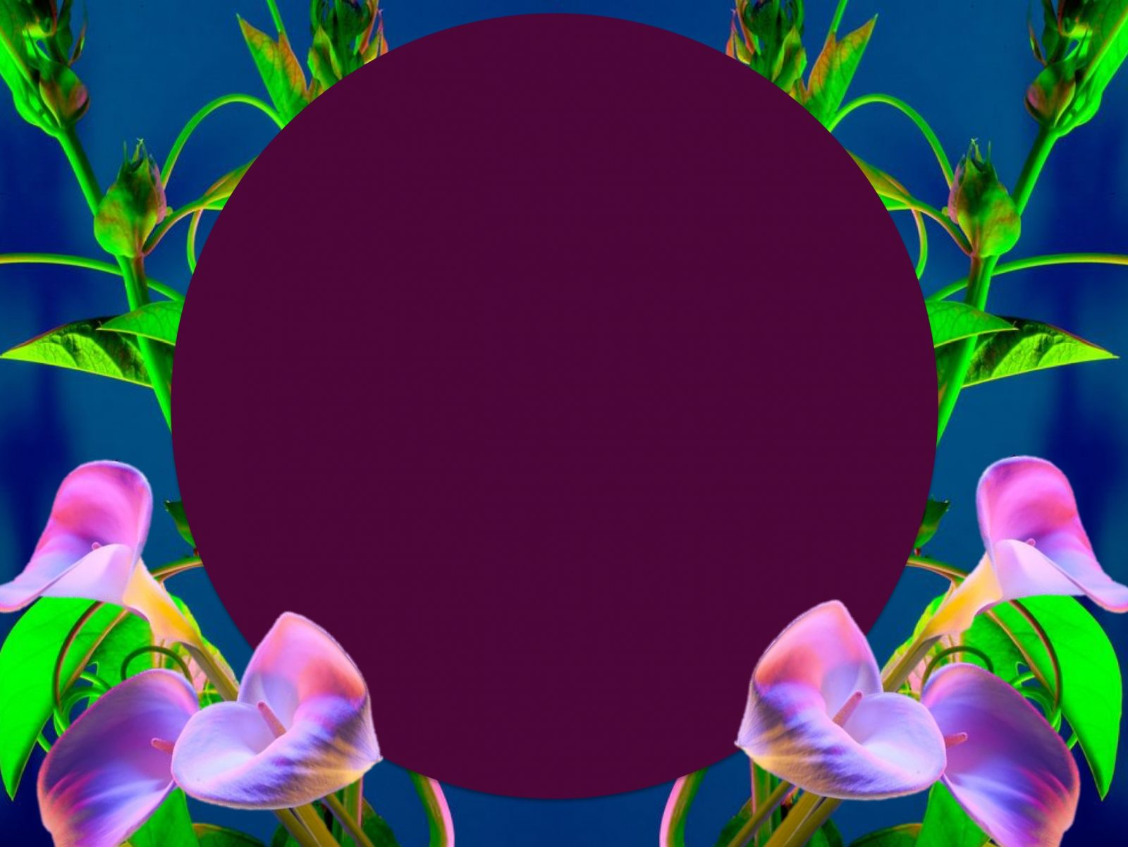 New Moon in Aries Horoscopes - April 2019 ~ Chani Nicholas
