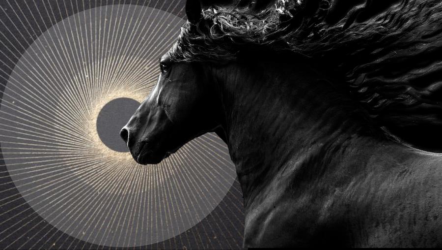 Horoscopes for the Full Moon in Sagittarius - June 2019 ~ Chani Nicholas