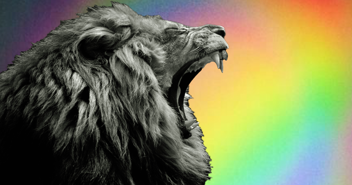 Horoscopes for the New Moon in Leo 2019 ~ Chani Nicholas