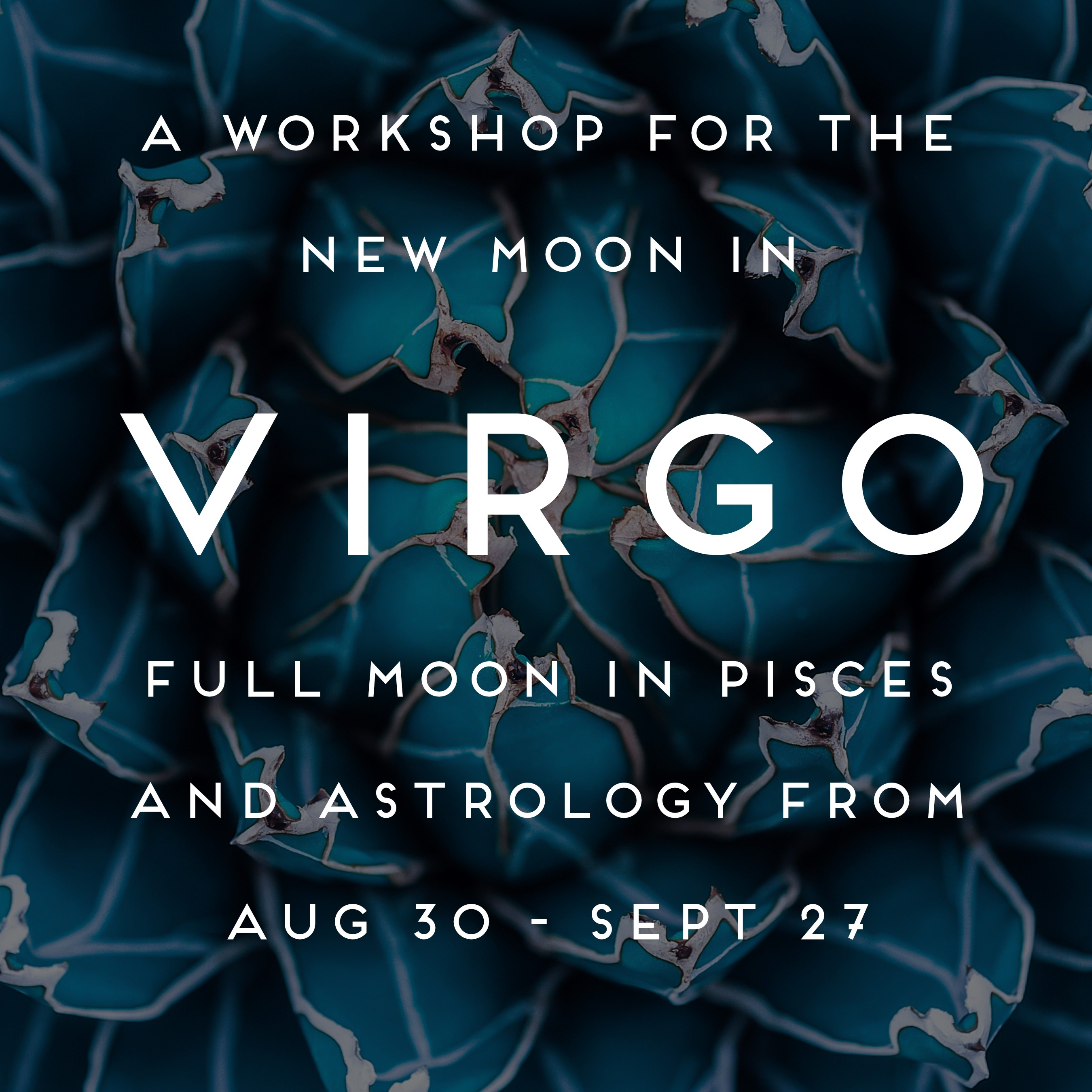 Horoscopes & Monthly Astrology from Chani Nicholas | Chani