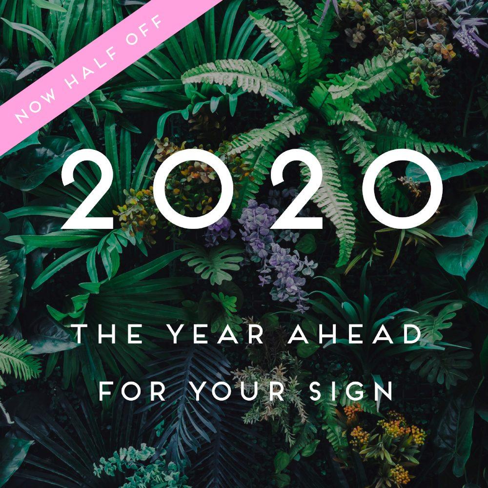 2020 YA half off 2
