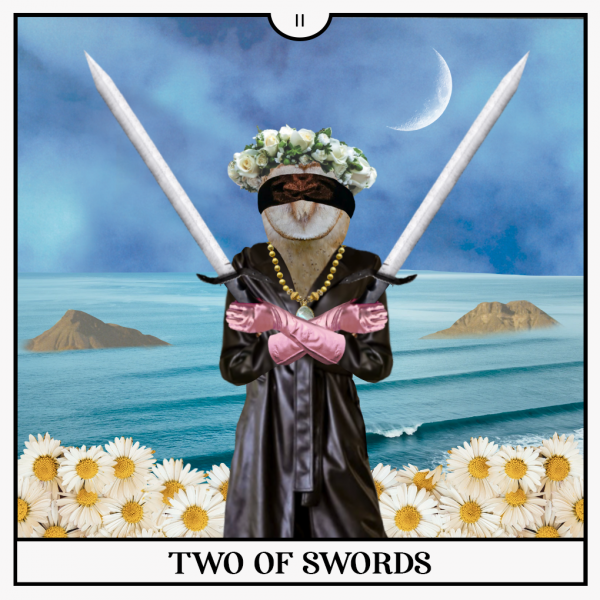 Two of Sword Tarot Card with blindfolded Owl standing in daisies in front of a cloudy night sea