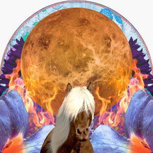 Sagittarius in Venus Collage